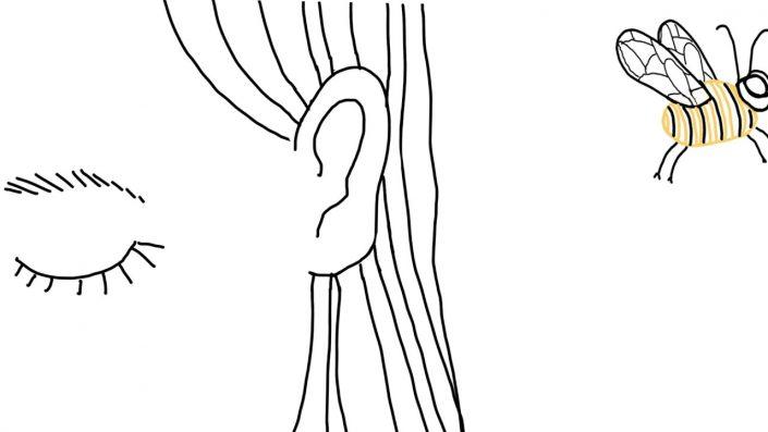Méditation et perceptions sensorielles
